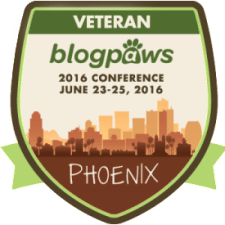 veteran-conf-badge