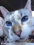 Christy selfie -