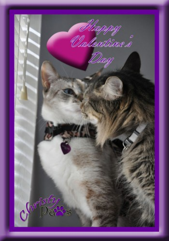 Christy's Love Valentine Card