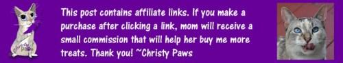Affiliate link banner