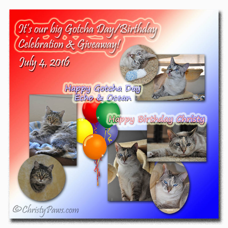 July Celebration 2016 and blogpaws swag giveaway