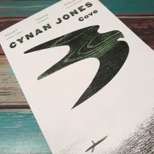 Cove by Cynan Jones (WildmooBooks.com)