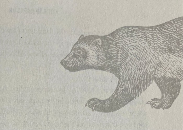 Wolverine design by Nancy Singer in A Solitude of Wolverines by Alice Henderson
