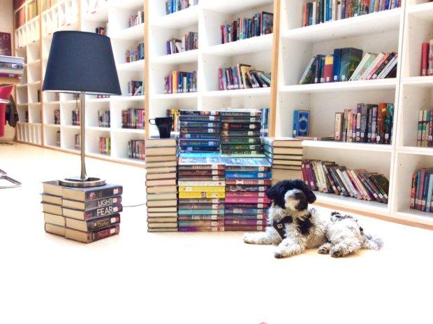 L'American Library in Paris s'équipe de solutions sous Chrome