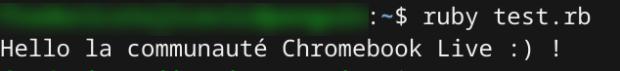 Développer sous Chromebook et Chrome OS !