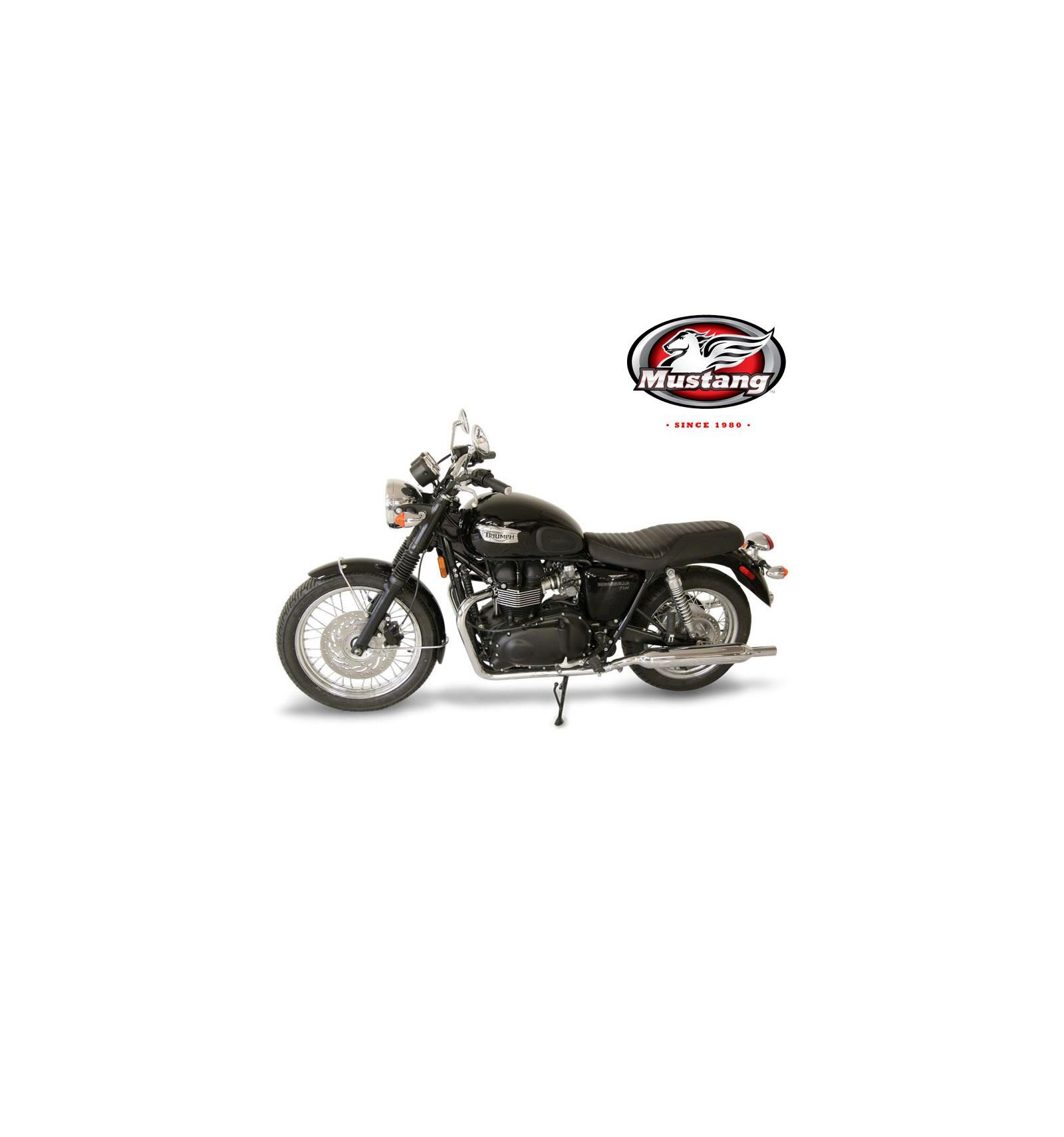 Triumph Bonneville, Bonneville T100, Bonneville SE