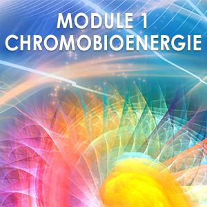 Module 1 Praticien en Chromobioénergie @ Centre Biophinity
