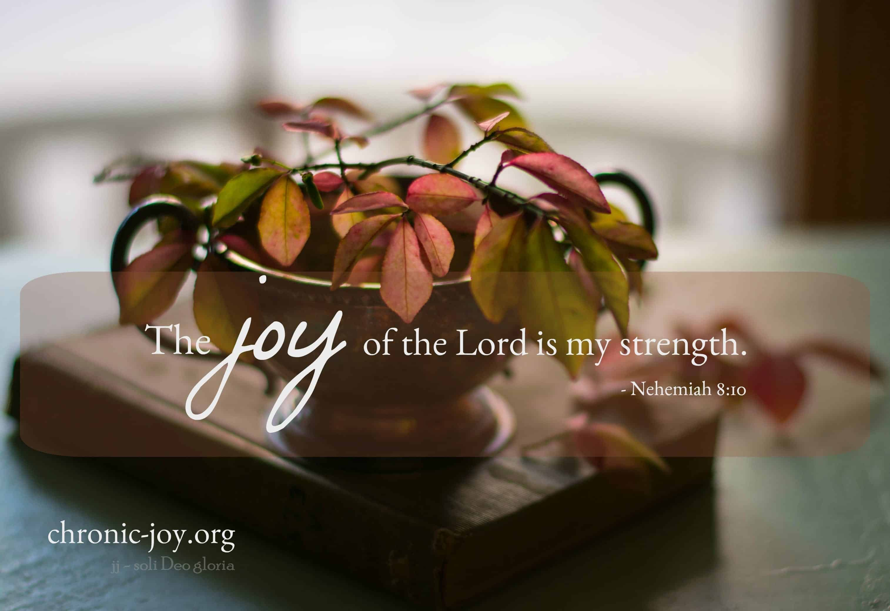 Joy of the Lord-2