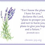 Lavender in bloom with Jeremiah 29:11