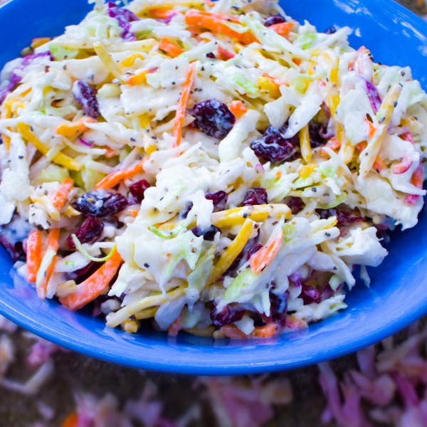 The Very Best Vegan Coleslaw - Gluten Free & Organic