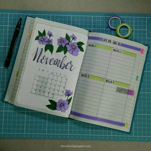 Bujo Nov month overview