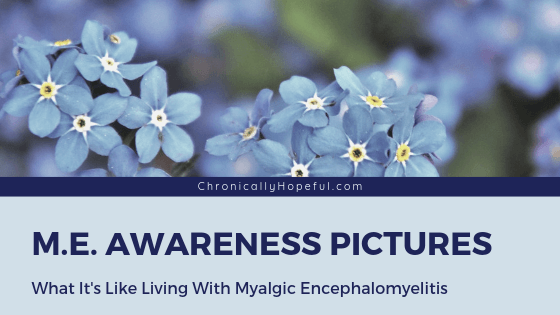 Forget-me-nots with the title: ME Awareness pictures, what it's like living with myalgic encephalomyelitis