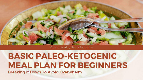 Plate of salad. Title reads, basic paleo ketogenic meal plan for beginners. breaking it down to avoid overwhelm. ChronicallyHopeful.com