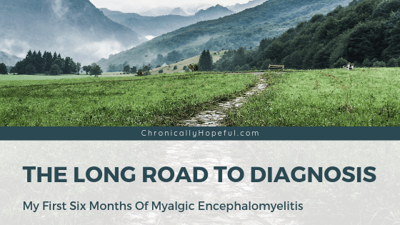 A country scene with a muddy path in the hills with mountains in the background. Title reads, The long road to diagnosis, my first 6 months of Myalgic Encephalomyelitis.