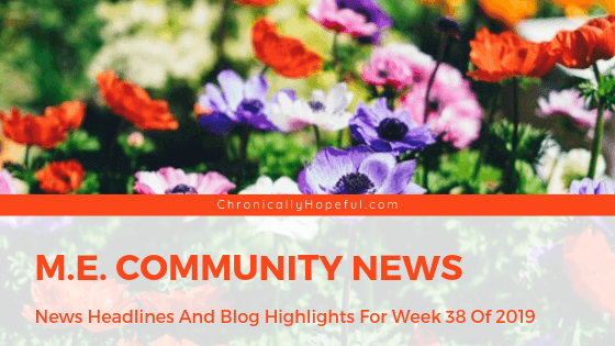 Picture of colourful wildflowers in a field, Title reads: M.E. Community News, News headlines and blog highlights from week 38 of 2019