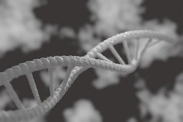 Mindbody Epigenetic Inheritance