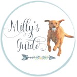 Milly's Guide