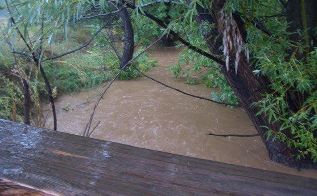 swollen muddy brown river