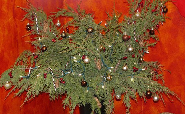 Chronic Illness Christmas Lite - experimenting with inexpensive branches from our juniper