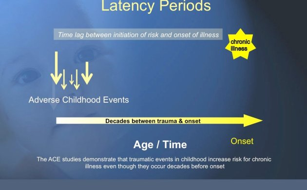Adverse Childhood Experiences and Chronic Illness - there is often a delay between trauma and disease onset, often decades long