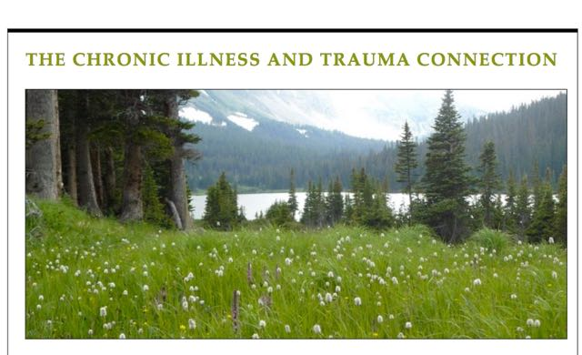 Can Trauma Cause Chronic Illness? ebook 1: An Overview of the Chronic Illness and Trauma Connection, by Veronique Mead, MD, MA