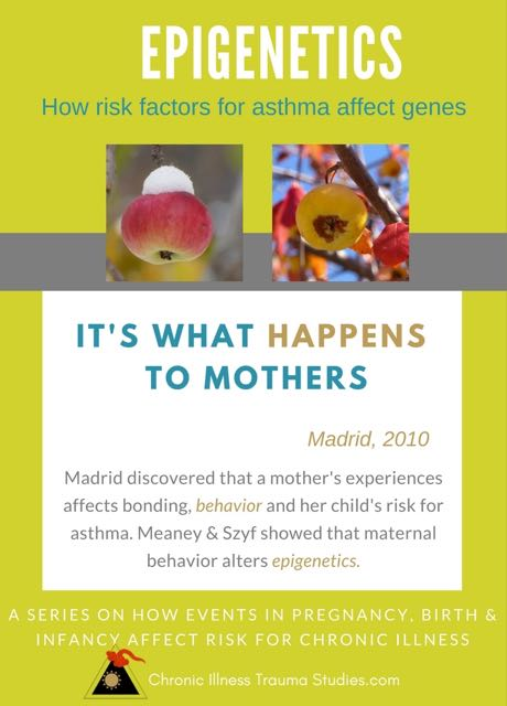 What happens to mothers during pregnancy, birth and in the first years of her child's life affects babies and health - subtle traumas, illness, difficult birth, cesarean, loss of a loved one, other prenatal stress and more. It's not a mother's fault - it's what happens to her. Maternal behaviors affect her child's perceptions of threat and sense of safety. They also alter her child's genes. But repair and healing are possible when we recognize what is happening