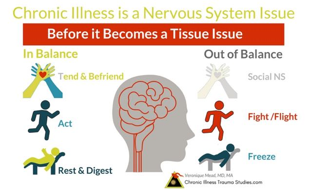 Chronic illness is a nervous system issue before it becomes a tissue issue. Citing from neurologist Dr. Robert Scaer, author of The Trauma Spectrum. Social nervous system, sympathetic nervous system, parasympathetic, ANS, fight, flight, freeze; polyvagal. #autoimmune #chronicillness #me/cfs #ra #rd #ms #ibd #fibromyalgia #parkinson's #alzheimer's #IBD Chronic Illness Trauma Studies (CITS) _Mead