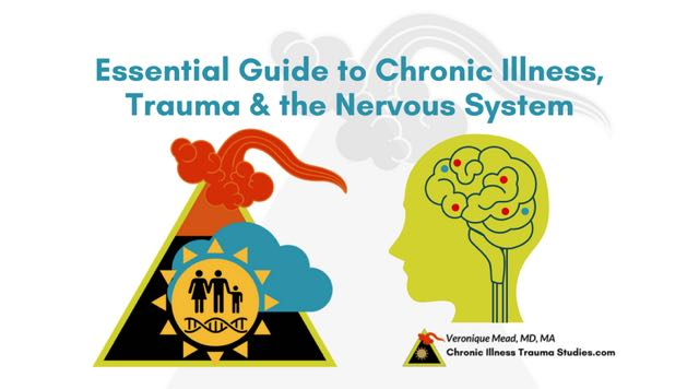 Essential Guide to Chronic Illness, Trauma and the Nervous System _ANS_parasympathetic_sympathetic_fight_flight_freeze_polyvagal_#autoimmune #chronicIllness #MS #ME/CFS #fibromyalgia #chronicfatigue #lupus #RA #RD #T1D #IBD CITS_Mead