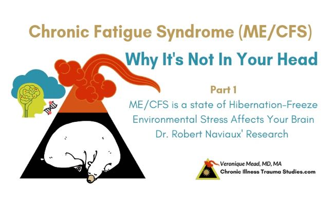 Chronic fatigue syndrome me / cfs is a state of freeze hibernation Mead_CITS