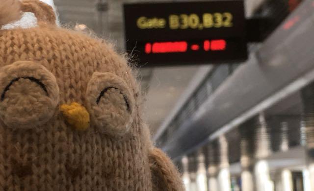 The Owl and I - Departure for Healing Multigenerational Trauma - Veronique Mead, Chronic Illness Trauma Studies blog