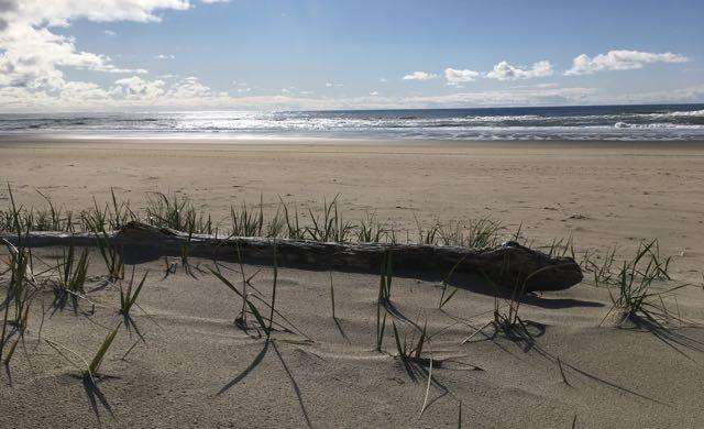 Comfort Sand Dunes