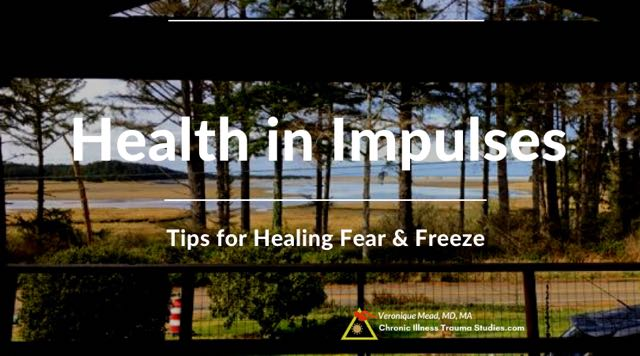 Healing in Impulses Working with Fear. Health in the Impulse to Flee Mead CITS