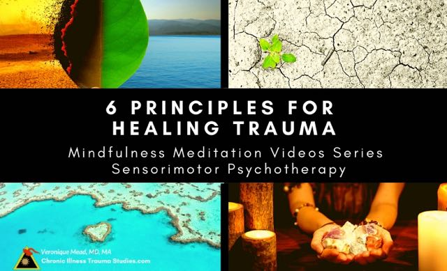 6 Principles Healing Trauma Mead CITS