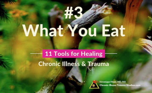 Healing Chronic Illness Diet Eating Mead CITS