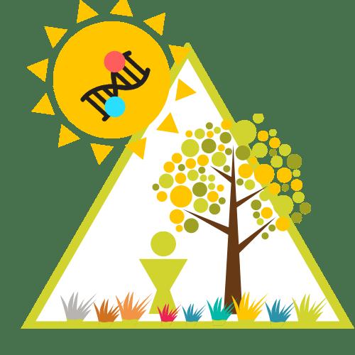 Healing Adversity Planting Seeds