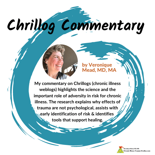 Veronique Mead Commentary on Chrillogs Mead CITS
