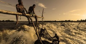 Elderly, but youthful, the Enyan tribesmen fish at Wagenia Falls.