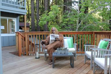 Daniel Oster as Bigfoot on Deck with Paper and Coffee