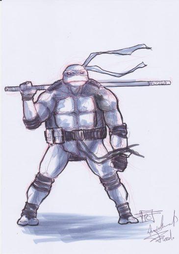 fred-pham-chuong---tortue-4e5cee1