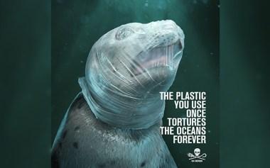 phoque-plastique