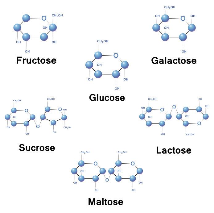 sucres simples : monosaccharides et disaccharides