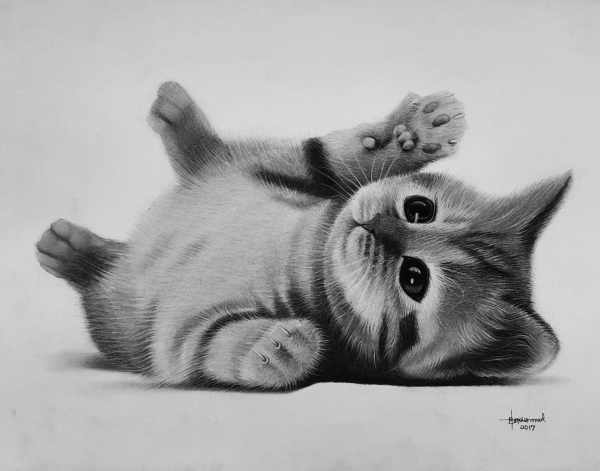 buy kitten wall painting for interior lagos