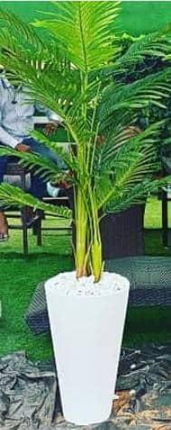 buy artificial plants in lagos