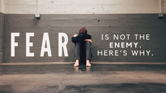 Fear is Not the Enemy. Here's Why.