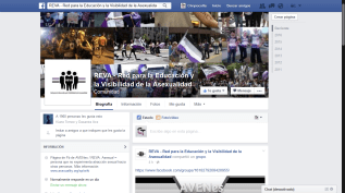 Captura de pantalla del Facebook de AVENes en 2016