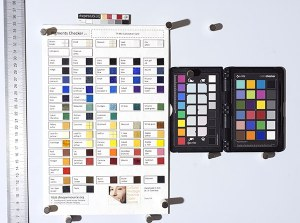 Calibration card and pigments checker