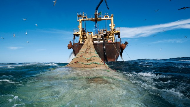 لجنة الفلاحة والتنمية القروية بالبرلمان الأوروبي تؤيد تجديد الاتفاق الفلاحي و الصيد البحري بين المغرب والاتحاد الأوروبي..
