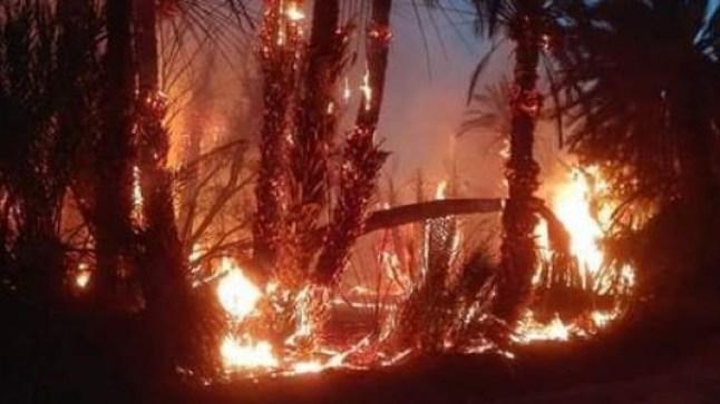جماعة تغمرت إقليم گليميم تشهد حريقا مهولا.. هو الثاني من نوعه في غضون شهر..