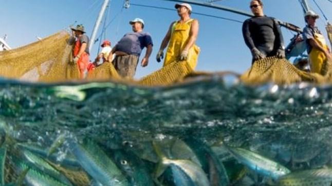 اتفاقية الصيد البحري بين الاتحاد الأوروبي والمغرب..لجنة تقنية ثنائية مختلطة تتكلف بتوزيع سفن الصيد جغرافيا..
