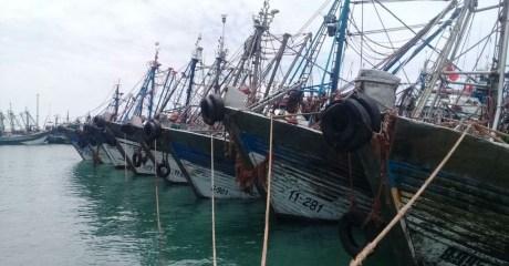 أمر قضائي لاعتقال أحد أباطرة الصيد بأعالي البحار بالداخلة في ملكيته 70 مركب للصيد